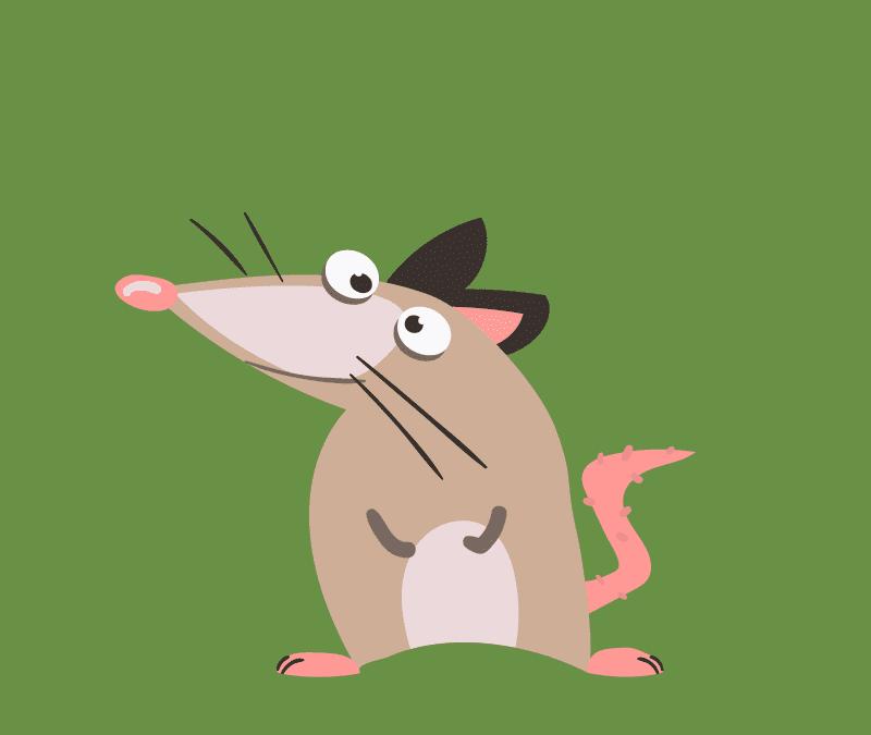 Das Google Possum Update